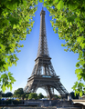 Eiffel Tower and nature