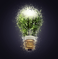 Electric bulb lamp (clipping path)