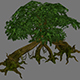 Jungle Area Arena game model tree swamp 01