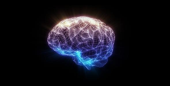 VideoHive Wire Brain 39140
