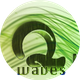 Q-Waves