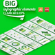 Big Green Infographics Design