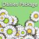 Daisies Package