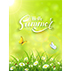 Green Summer Background with Grass and Sun