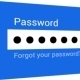 Password - Access denied / Access granted