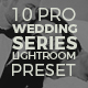The Visual Artist Wedding Preset Series