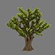 Plant - Ginkgo Tree 01