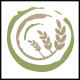 Organic Wheat Logo