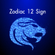 Zodiac 12 Sign Particle Looped