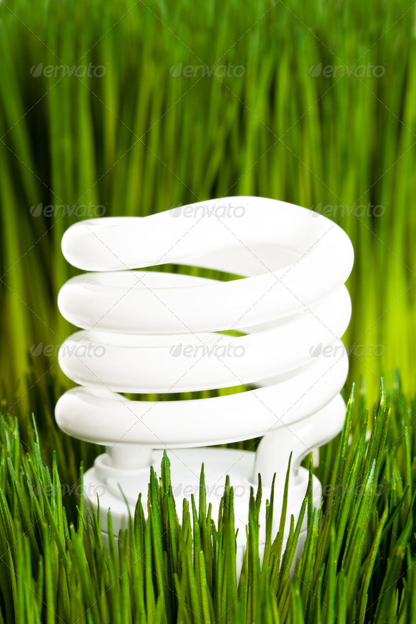 Compact Fluorescent Lightbulb - Stock Photo - Images