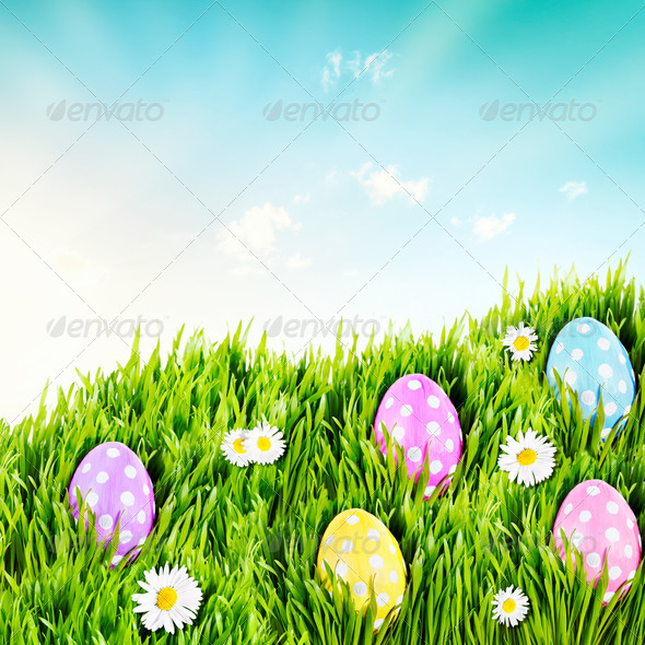 Polka dot eggs - Stock Photo - Images