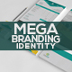 Business Identity Mega Branding Bundle