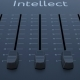 Sliding Fader with Intellect Inscription