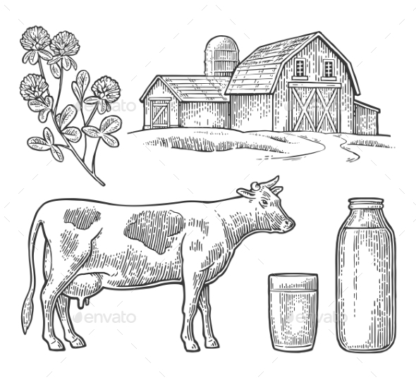 Milk Farm Set