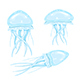 Set of Jellyfishes