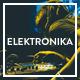 Download Elektronika - Music / Artist / Radio WordPress theme from ThemeForest