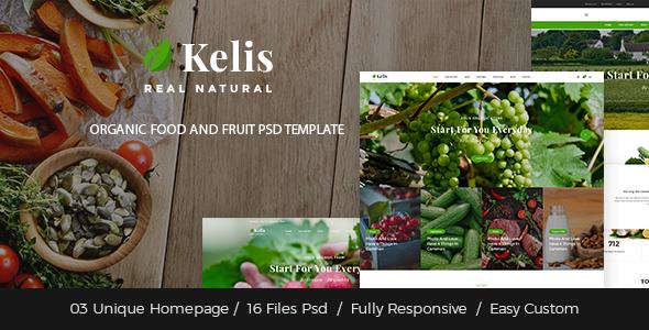 Kelis – Organic Meals And Fruit Retailer PSD Template (Meals)