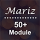 Mariz - 50+ Module Responsive Email Template + Campaign Monitor + Mailchimp + Stampready Builder