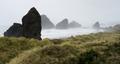 Misty Foggy Beach Pacific Ocean West Coast USA