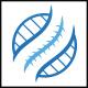 Chiropractic Circle Logo