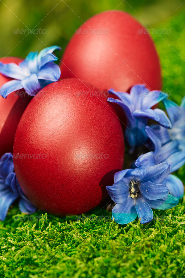 Beautiful red Easter eggs - Stock Photo - Images