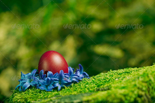 Beautiful red Easter egg - Stock Photo - Images