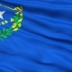 Waving National Flag of Nevada