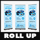 Car Wash Roll Up Banner - Signage