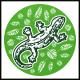 Jungle Lizard Logo