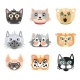 Set of Cute Cartoon Cats Heads. Colorful Character