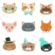 Set of Cats Heads of Different Breeds