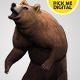 Bear Standing Up 01
