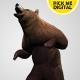 Bear Standing Up 02