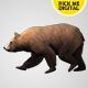 Bear Walking Loop 01
