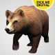 Bear Walking Loop 02