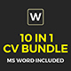 Big Resume Bundle
