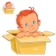 Illustration of Baby in Box