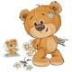 Teddy Bear Hides Bouquet of Flowers