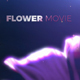 Titles Flower