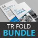 Trifold Brochure Bundle - 3 in 1