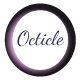 Octicle - Personal WordPress Blog Theme