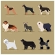 Dog Flat Icons Set