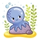 Octopus Sits on a Rock