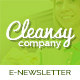 Cleansy - Cleaning Service E-newsletter Template