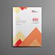 Clean Pro Annual Report Brochure V11