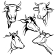 Isolated Cow Head Vector Portraits