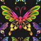 vector set colorful butterflies - GraphicRiver Item for Sale