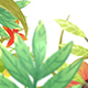 Botanical title