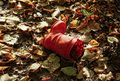 Child's red boot lying on fallen leaves