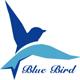 Blue_Bird_13